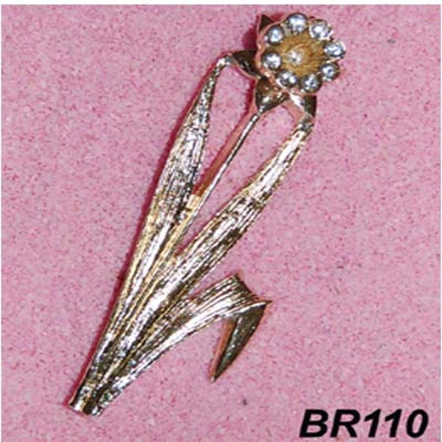 BR110