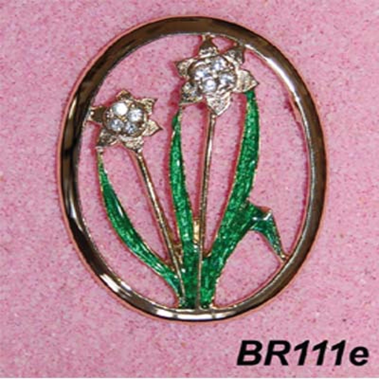 BR111/e