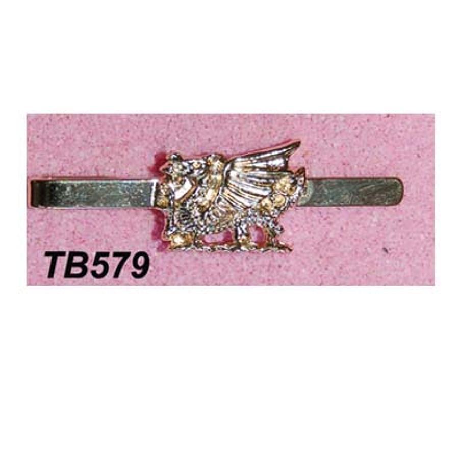 TB579