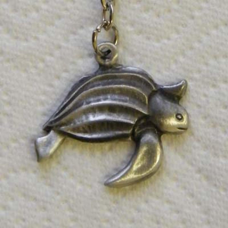 KR0741 Turtle