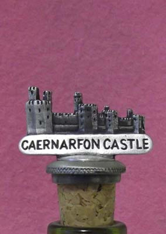 BS1008 Caernarfon