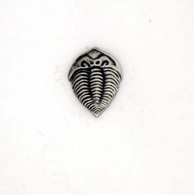 LP1571 Trilobite
