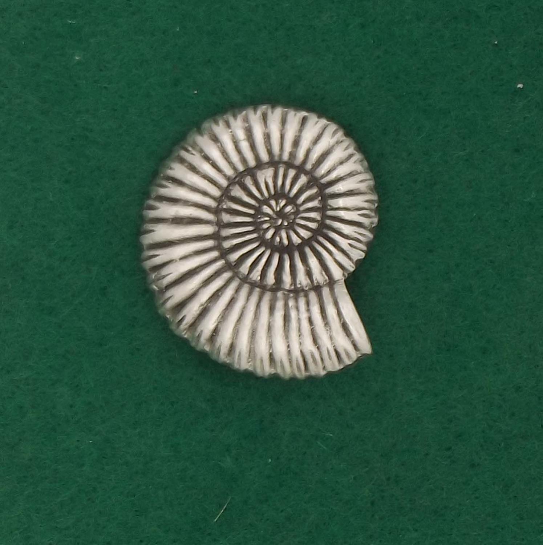 BR1570 Ammonite