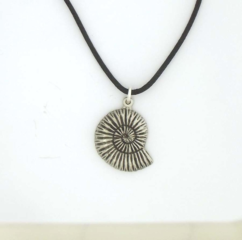 P1569 Ammonite